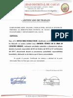 CATASTRO LAYER.pdf