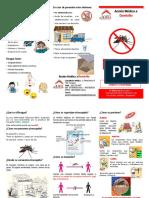 denguetripticodengue.pptx