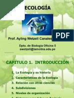 Capitulo 1 Introducción AW 2017 im.pdf