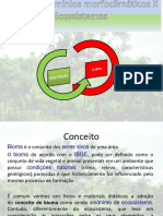 1 ANO-Biomas do Planeta(1).ppt