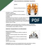 Evaluación Del Sistema de Gestión de La Seguridad y Salud en El Trabajo[1]