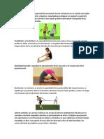 Movilidad Muscular