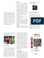 97203230-triptico-biodiversidad