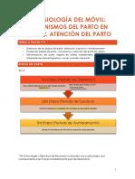 14. Fisiología del móvil, mecanismos y atención del parto .pdf