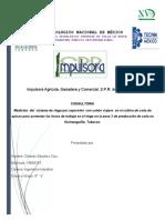 consultoria tarea 4.pdf
