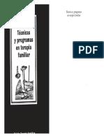 eBook Tecnicas y Programas en Terapia Familiar NAVARRO