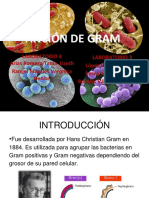 TINCION DE GRAM (1) (1)