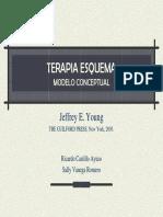 Young_cap_1.pdf