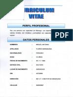 CV MIGUEL FLORES NORABUENA.pdf