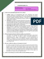 Cuestionario 6 Organometalica Zeolitas