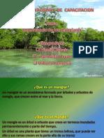 4) presentacin2-111125193208-phpapp02