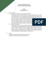 3b. Format TM Stulabo - Lab DDM