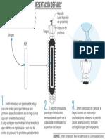 Así funciona el método de 'presentación de fagos'