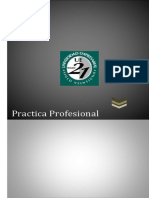 PRACTICA PROFESIONAL Siglo 21 . Actividad 2 - Actividada Practica