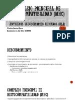 HLA (Antígenos Leucocitarios Humanos)