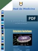 Bacterias - Dr. Luis Merino