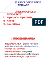 4. Procese Patologice Tipice Tisulare