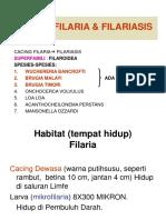 filaria plus angiostrongylus  uwk.ppt