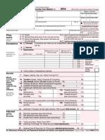 Individuals Tax Return - US 2016
