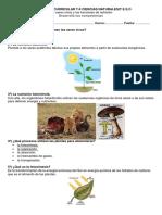 9 los seresvivosy las funciones de nutricion.pdf