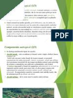 Proiect factori geoecologici partea 2.ppt