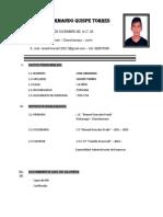 curriculum QUISPE TORRES.docx