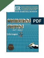enfermagem_2008.pdf