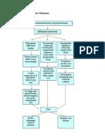 Patofisiologi Keracunan Makanan