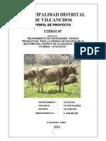 PIP Vilcanchos