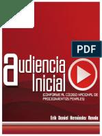 AUDIENCIA INICIAL - ERIK RAUDA.pdf