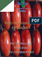 doenças maracujazeiro.pdf