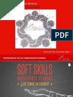Rol de La Mujer en La Minería Del Perú. Desafíos Sociales y Ambientales