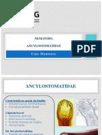 3 - Ancylostomatidae (1)