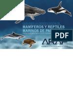 Guia mamiferos marinos_Panamá.pdf