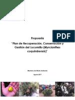 Propuesta Plan ReCoGe Lucumillo