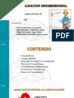 Grupo 5 - CONSOLIDACION UNIDIMENSIONAL.pptx