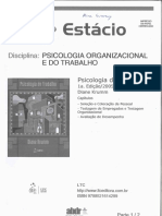 Psicologia_do_Trabalho_Diane_Krumm_Patre.pdf