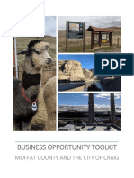 Business Opportunity Toolkit Report