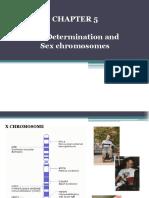 GeneticsChapter5-sexdeterminationandsexchromosomes.pdf