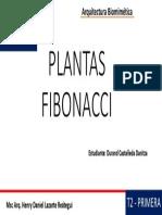 Plantas Fibonacci