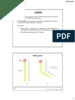 Lipideos e Membranas - Eng Amb - 2015-1