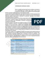 SEMINARIO 13.pdf