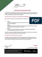 REMUNERACion b.pdf