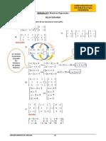 Solución - Matrices Especiales