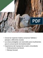 Biodiversidad y Manejo Forestal