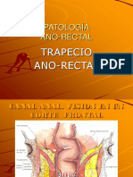 Patologia Rectal y Ano