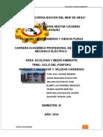 Monografía del fosforo ECOLOGIA.docx