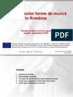 IPP Raport Noi Forme de Angajare Final