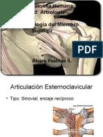 Clase Artrología Miembro Superior
