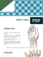 CLASE 04. MUÑECA.pdf